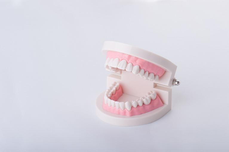 詰め物・被せ物・入れ歯